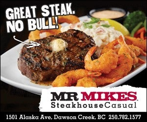 web ad Mr Mikes.jpg